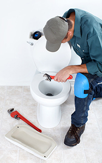 professional toilet repair